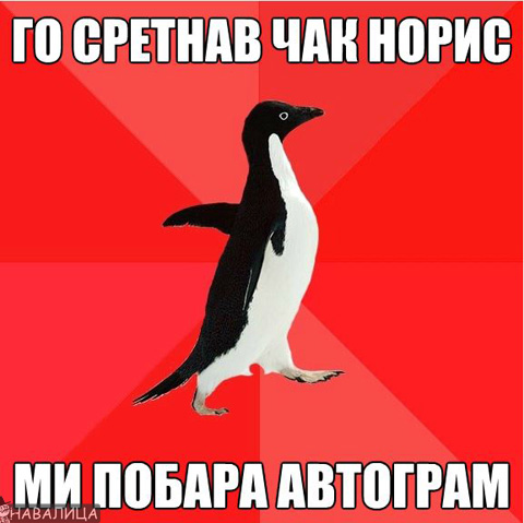 avtogram