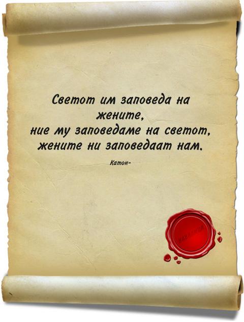 citati-311