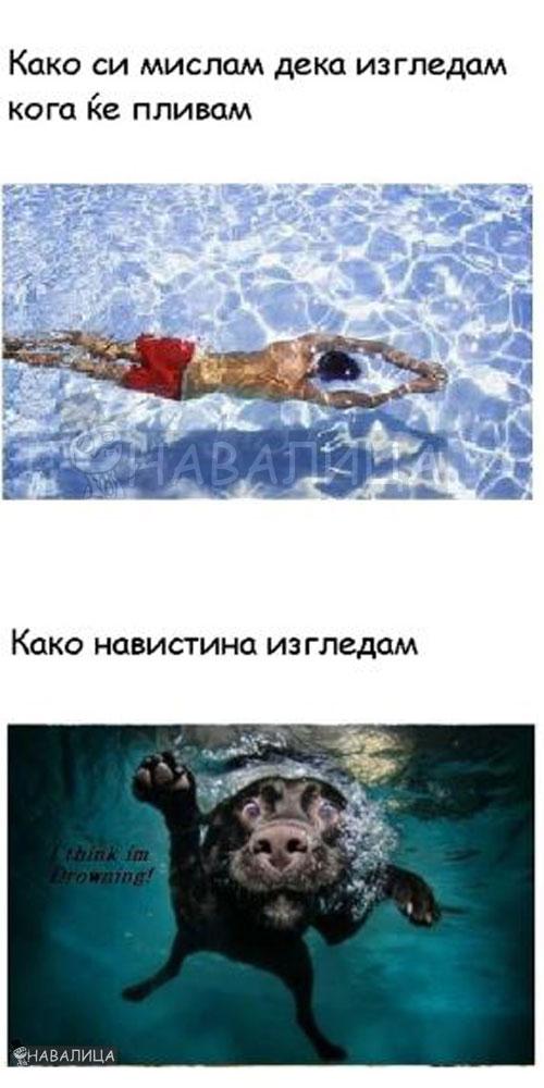 plivac1123