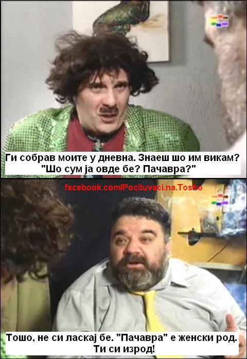 pacavra