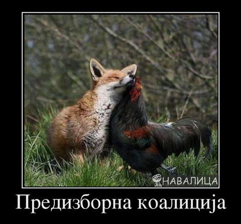 574579_predizborna-koalitsia_demotivators_to