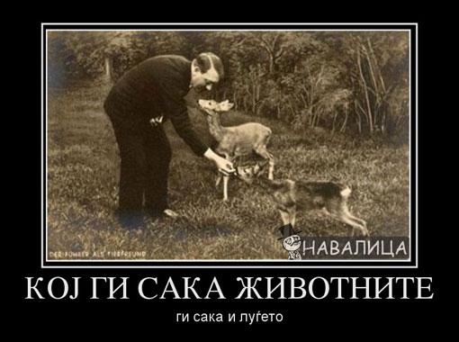 koj-gi-saka