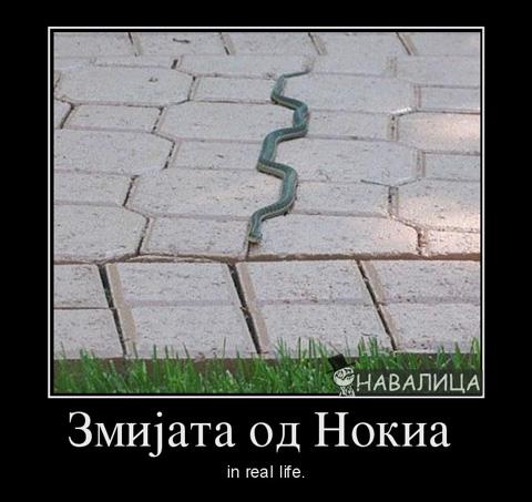 zmijata