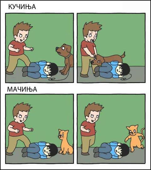 macki