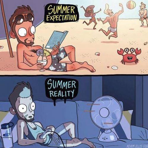 realnost