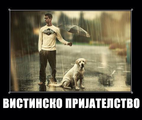 prijatel