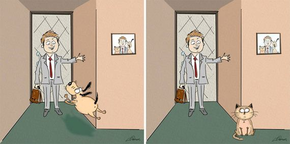 02-cats_vs_dogs