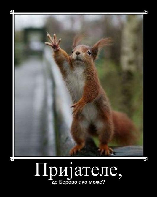 prijatele