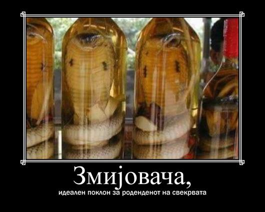 zmijovaca