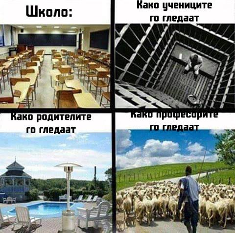 skolo