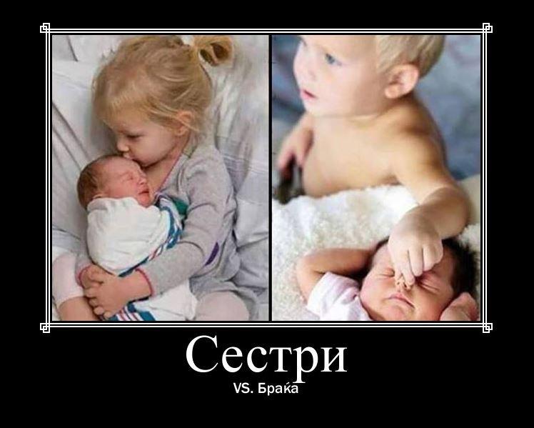 sestri
