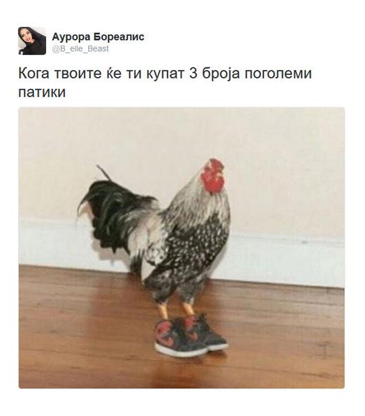 patki